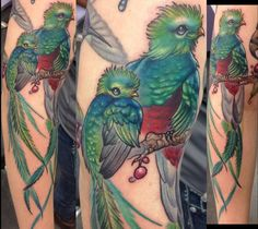 Quetzals by Callie at High Resolution Tattoo in Baton Rouge