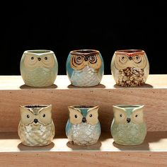 Set of 3 or 5 Owl Succulent Planters