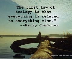 """""""The first law of ecology is that everything is related to everything else."""" ~ Barry Commoner"""
