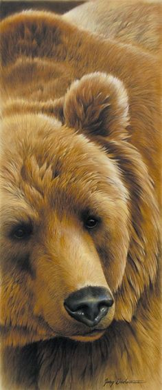 GRIZZLY BY JERRY GADAMUS. I love how large this grizzly is and how the artist drew the layers of his fur.