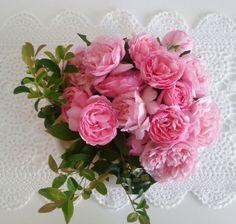 Bouquet of Duchess De Brabant roses
