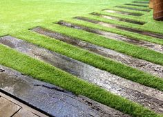 Sydney Synthetic Grass Using only the best Australian made Sy. Sydney Synthetic Grass Using only t Artificial Grass Carpet, Artificial Turf, Landscape Design, Garden Design, Fake Turf, Fake Grass, Design Jardin, Small Backyard Patio, Stone Path