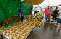 Selling pineapples at the Suva Market