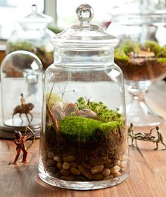 Terrariums are easy to make and require very little maintenance. Keep reading to find out how to make your own, and take a look at these adorable terrariums you can recreate!