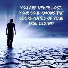 You are never lost.   Your soul knows the coordinates of your true destiny.  #destiny #lifeplan #lifepurpose #soulpurpose #soul #higherself #divineself #spiritualmission #innerguidance #intuition #innervoice #goals #lifecalling #lifedesign #consciousliving #consciousness #spirituality #spiritualquotes #meaningoflife #quotes #quotestoliveby #anthonstmaarten #anthonstmaartenquote #divineliving #divinelivingbook #psychic #psychicreading #psychicmedium