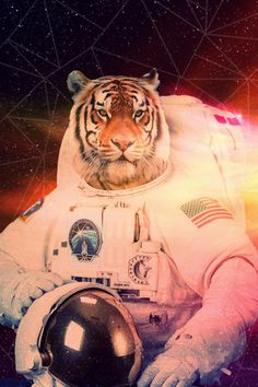 for the frame wall: Space Tiger – Buy Me Brunch