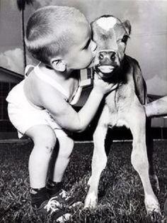 La amistad tiene 2 ingredientes:El descubrimiento q nos hace similares.El respeto q nos hace diferentes #FelizDomingo