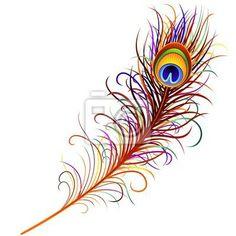 peacock wall mural - Google Search