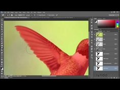 Adobe Photoshop CC 2015 Tutorial | 109 Adding motion blur with the Smudg...