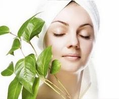 Best Natural Skin Care Products that Everyone Should Possess