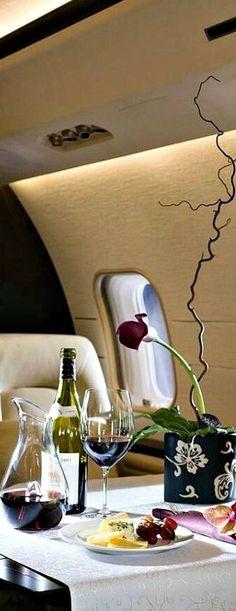 Private jet ~luxury style #billionaireluxe