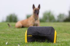 Hundeshop - Hundesport Zubehör - Technikkissen Leder groß