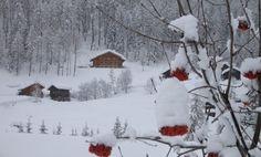 Mas de la Bolp, Val di Rabbi, Trentino.