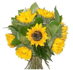 Ramo de girasoles. Ramo de girasoles producto de la semana de Quedeflores.com #promoción #flores