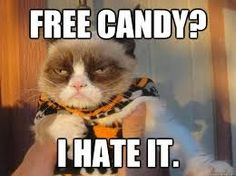 #GrumpyCat #meme Grumpy Cat gifts and meme on www.pinterest.com/erikakaisersot