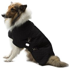 Legitimutt Quilted Horse Blanket Dog Coat, Size 16, Black ** You can get more details by clicking on the image.