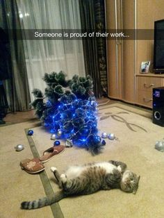 a6d754d4f5 25 Pets Who Ruined Christmas -. Christmas Cat ...