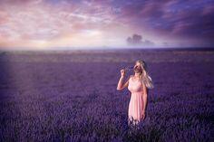 a purple dream by Pier Luigi Saddi on 500px