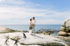 These beautiful wedding pictures belong to a German couple that got married in Cape Town and had their photos taken at Boulders Beach in Simonstown. We had the honour of doing the flowers for their wedding.