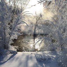 I have seen Beautiful springs in Alaska like this... BUT Ready for REAL SPRING..... =) No Snow.........
