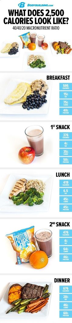 Fat Burning Meals Plan-Tips What Does 2,500 Calories Look Like? 40/40/20. If you like eating, the traditional bodybuilding plan is great because you get to consume a pretty high volume of food. If you like a little more fat in your diet, though, you may want to consider a different option. We Have Developed The Simplest And Fastest Way To Preparing And Eating Delicious Fat Burning Meals Every Day For The Rest Of Your Life
