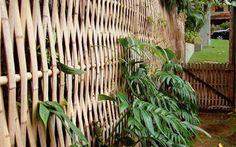 Resultado de imagem para como amarrar bambu
