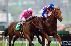 February 07 2015: Dortmund with jockey Martin Garcia up (right0 defeats Firing Line and Gary Stevens towins The GII Robert Lewis Stakes at Santa Anita Park in Arcadia CA. Alex Evers/ESW/CSM`
