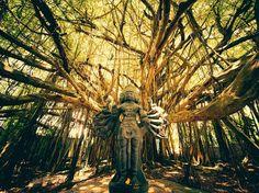 Shiva Statue in Sunlight Image, Kauai, Hawaii - National Geographic Photo of the Day