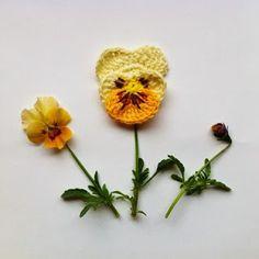 In the Yarn Garden: Pansies