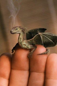 Wish they were real so I could have one! So cute!!