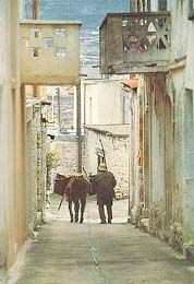 Cyprus - Omodos