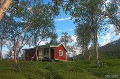 Senja Midnight Sun, Nature Scenes, Norway, Wander, Cabin, House Styles, Places, Travel, Viajes