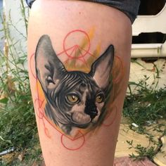 Healed #sphinx cat #tattoo on leg #color #realistic #painfulart #manu #geometric #design #romania #ramanianartist #bucharest #painfulartmanu