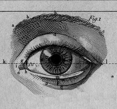 """chaosophia218: """" Paul Bert - L'Année préparatoire d'enseignement scientifique, 1887. """""""