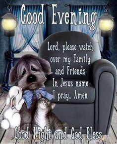 131 Best Good night blessings images in 2019 | Good night
