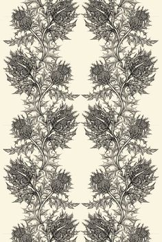 Love timourous beasties wallpaper! Thinking of this for powder room.... hmmm...
