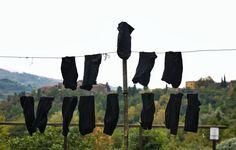 Tuscan villa | Socks Fiona Watson