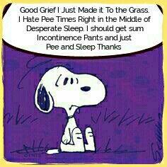 Pee or Sleep?   A Total Nuisence.