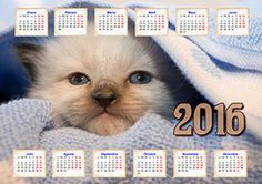 Calendarios 2016 con fotos creados en Photo Calendar Creator