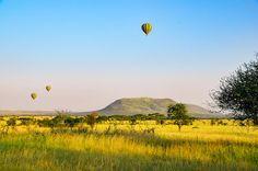 Our self drive camping safari to Lake Manyara, Ngorongoro Crater & Serengeti National Park, Tanzania, including helpful tips & photos.