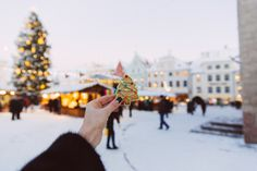 Tallin, Estonia // Simple + Beyond