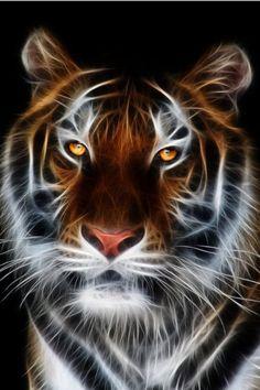 Haunting Tiger
