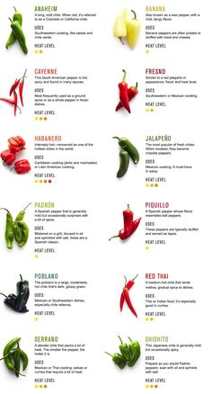 Types of Chili Peppers & Cooking with Chili Peppers. This is just what I need for using the correct chile pepper with the right dish! Types Of Chili Peppers, Cooking Tips, Cooking Recipes, Cooking Pork, Basic Cooking, Girl Cooking, Freezer Recipes, Skillet Recipes, Cooking Salmon