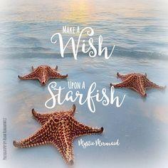 Make a Wish, Upon a Starfish! Here's 3 wishes!!! ❤ Mystic Mermaid