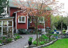 Helsinkiläisen rintamamiestalon piha on täynnä upeita kevätkukkia. Mahtuupa puutarhaan myös suloinen kesähuone ja suuren, varjostavan puun alle perustettu varjotarhakin.