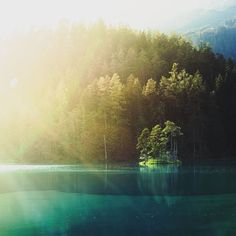 """""""The island. Two weeks ago: the last sunrays on this little island in Little Island, Austria, River, Instagram Posts, Outdoor, Outdoors, Outdoor Games, The Great Outdoors, Rivers"""