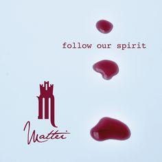 follow our spirit Follow Us, Spirit