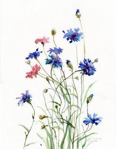 Cornflowers painting Wild Flowers by VerbruggeWatercolor on Etsy