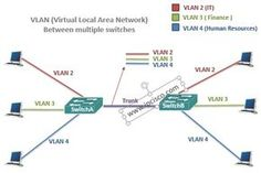 vlan(virtual local area network)