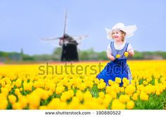 Adorable curly toddler girl wearing Dutch traditional national costume dress and hat playing in a field of blooming tulips next to a windmill in Amsterdam region, Holland, Netherlands - stock photo